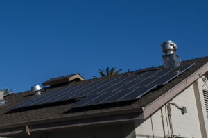 Local businesses take advantage of solar power