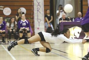 Volleyball: Tigers complete first sweep over Flames