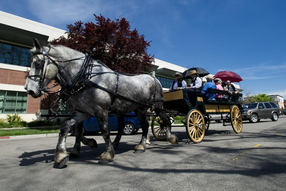 All Seasons Carriage offers historic tours of Lodi