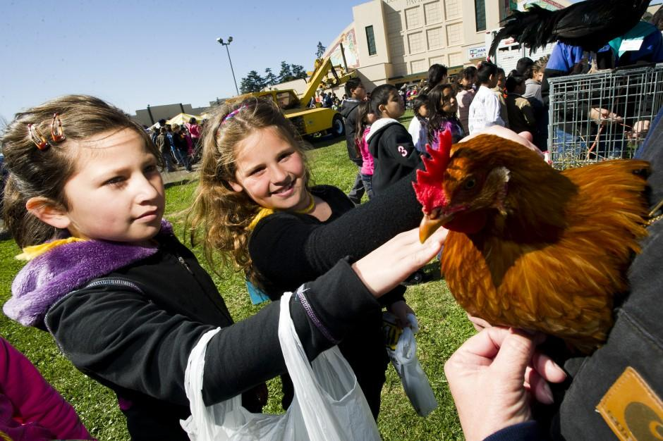 Lodi students flock outside for AgVenture