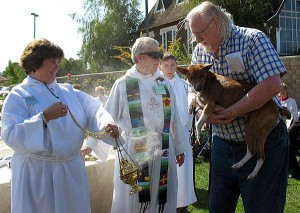 Lodi, Galt churches consecrate critters at Blessing of the Animals