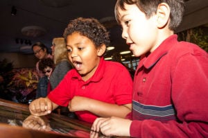 Discover the world of bugs at Xtreme BUGS exhibit