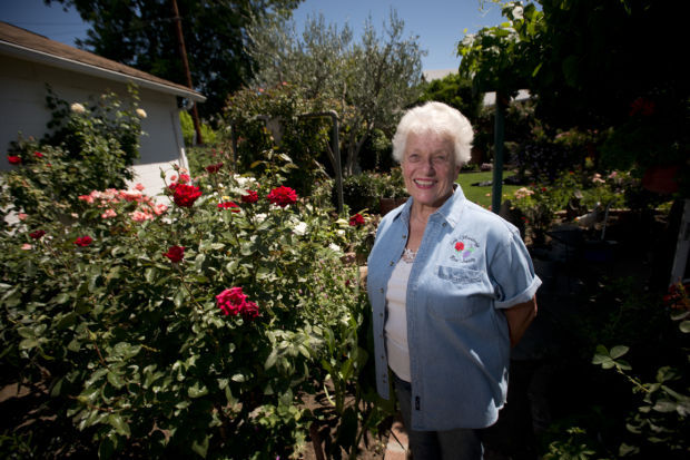 Lodi Woodbridge Rose Society member Marge Cordero shares joy of roses