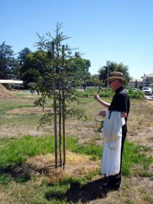 Blessing of the Robert Mondavi Memorial Grove