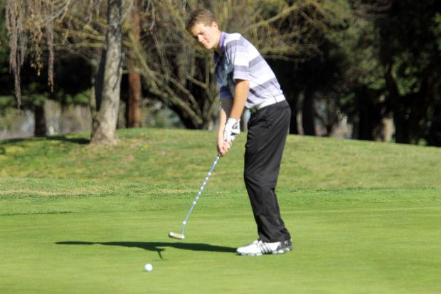 Boys golf: Flames, Tigers try to play it straight