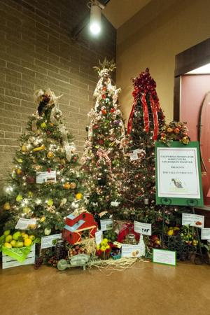 Decorators' hard work shone brightly at Festival of Trees