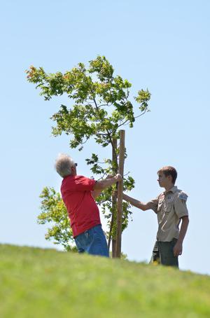 Tree Lodi hosts 'Walk in the Park' at DeBenedetti Park