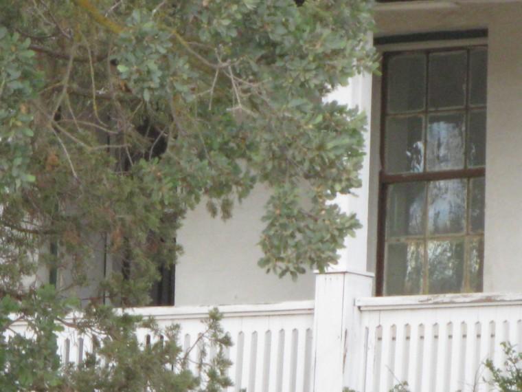Empty home?