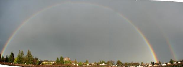 Woddbridge Vineyard Rainbow
