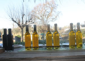 Cecchetti Farms offers flavored olive oils to Wine and Chocolate Weekend visitors