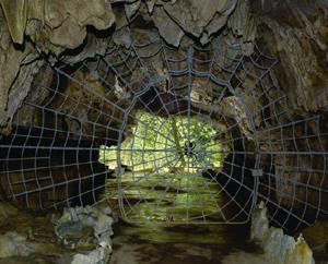 Explore a more natural fear with the Halloween tour at Crystal Cave