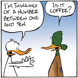 Ducks seeking coffee