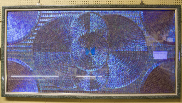 Lodi consignment store hosts unusual butterfly art