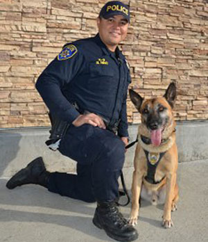 Galt Police Department's only dog suffers a career-ending injury