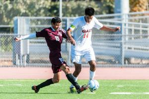 Boys soccer: Warriors roll to first section title with win over Bruins