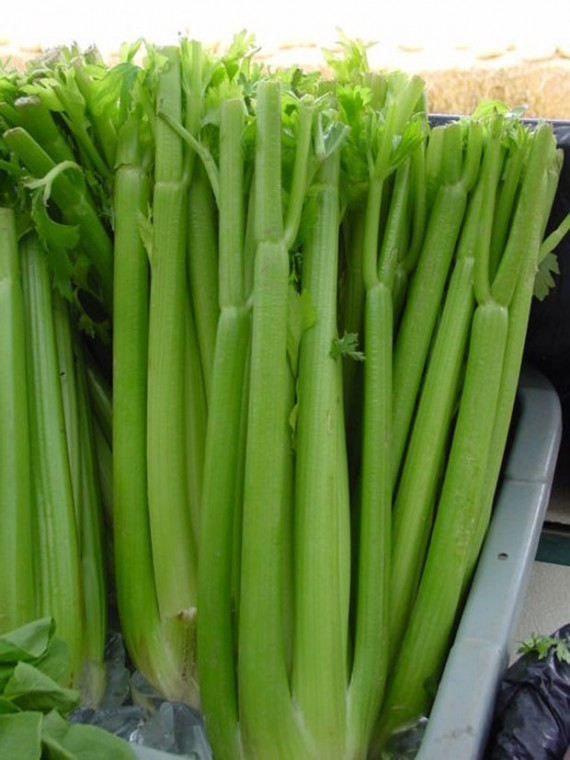 Make celery a part of your main cuisine