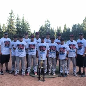 Tall Timber Wood bat Champs