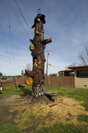 Acampo tree finds new life as totem pole