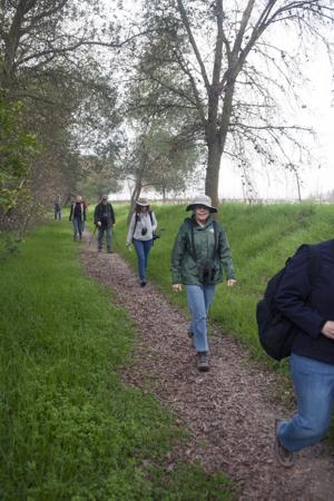 Local birders explore the Mokelumne River floodplain