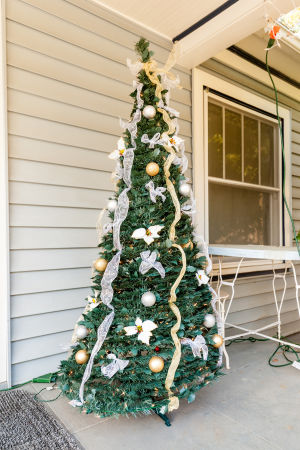 Seeking Lodi's Christmas tree stories by going door to door