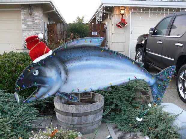 Christmas salmon stolen from local fisherman's yard