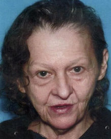 Police search for  missing woman in Galt