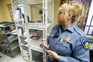 City Council takes a tour of the Lodi Animal Shelter