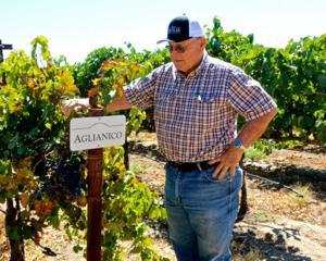 Randy Caparoso: Mettler's Aglianico is rare and sumptuous