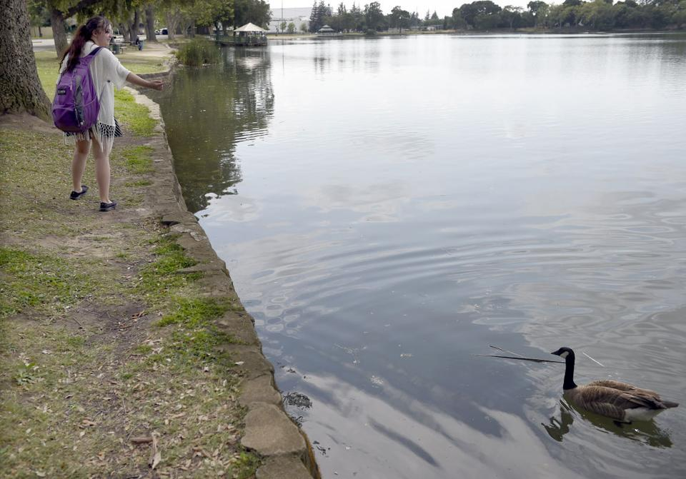 Sierra storms unlikely to bring rain to lodi lodinews for Lodi lake fishing