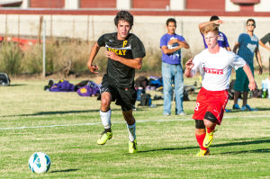 Tigers sweep past Calaveras