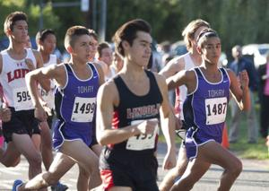 Cross country: Lodi Flames, Tokay Tigers stand their ground at league championships