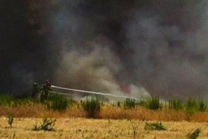 Lodi firefighters swiftly get grassfire on Lower Sacramento Road under control