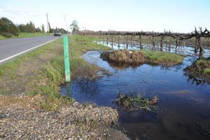 Lodians float new flood concerns