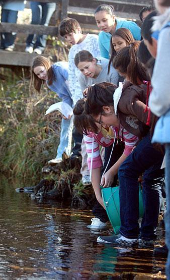 Environmental experience
