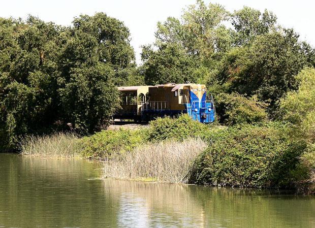 Solve a mystery on the Sacramento RiverTrain