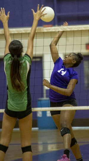 Volleyball: Rams too tall an order for Tigers