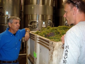 Discussing Borra Viognier winemaking