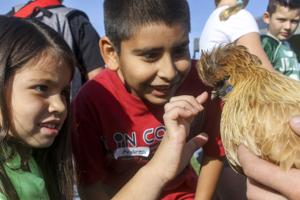 Galt students have a field day at Liberty Ranch High School