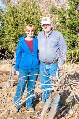 Spenker Winery finds new ground in Lodi wine scene