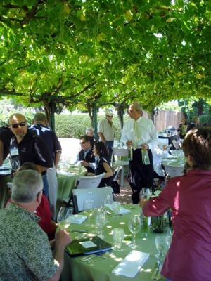 Elegant Luncheon at Concannon Vineyard