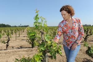 Winemaker Heather Pyle-Lucas
