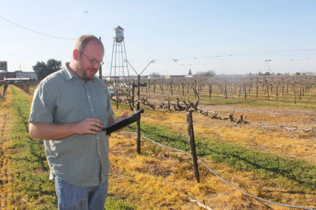 Lodi growers go digital