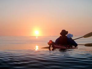 Enjoy kayaking, viewing wildlife in Noyo Harbor