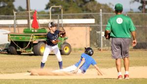Central baseball