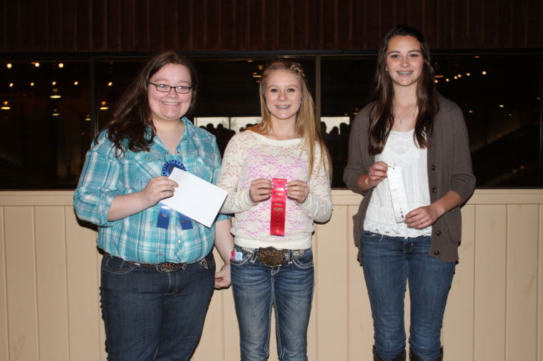 Angelina County Youth Fair Cake Contest