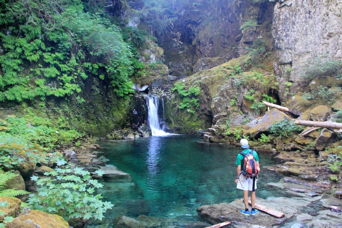 Into The Heart Of Opal Creek Wilderness Outdoors And