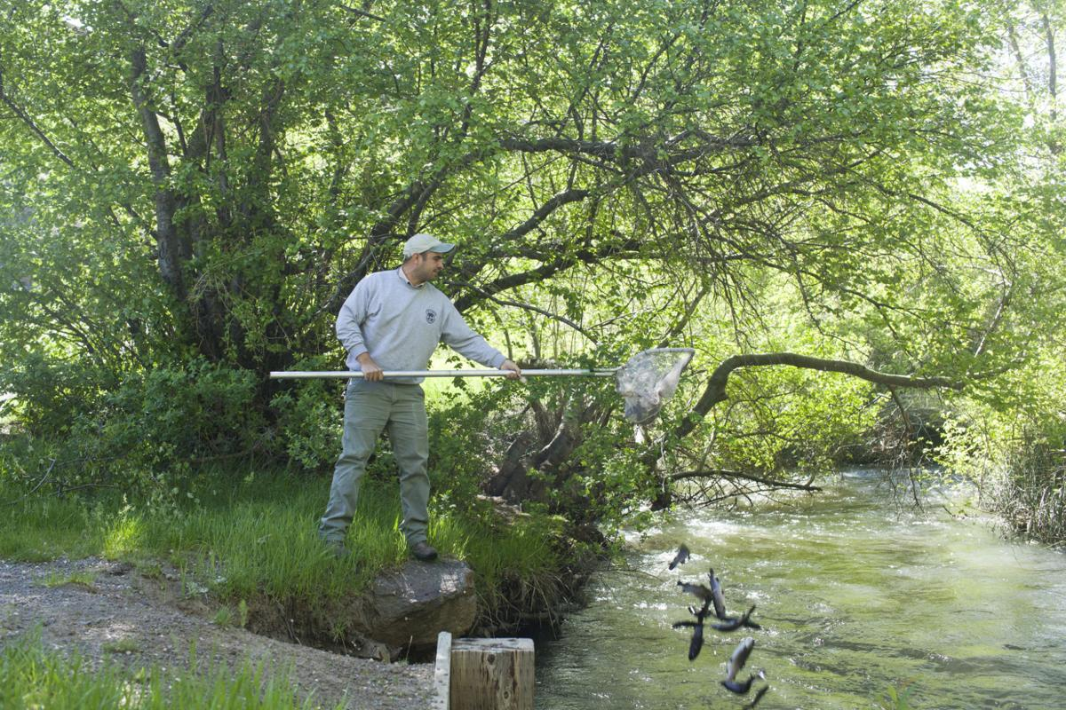 October fish stocking schedule for magic valley waters for Fish stocking ca