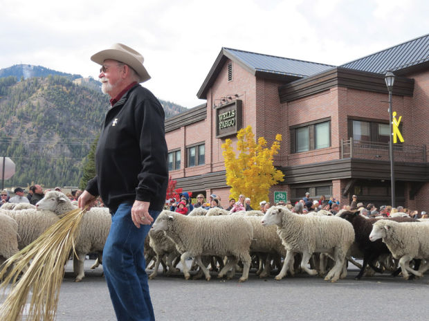 Trailing of Sheep Ketchum parade