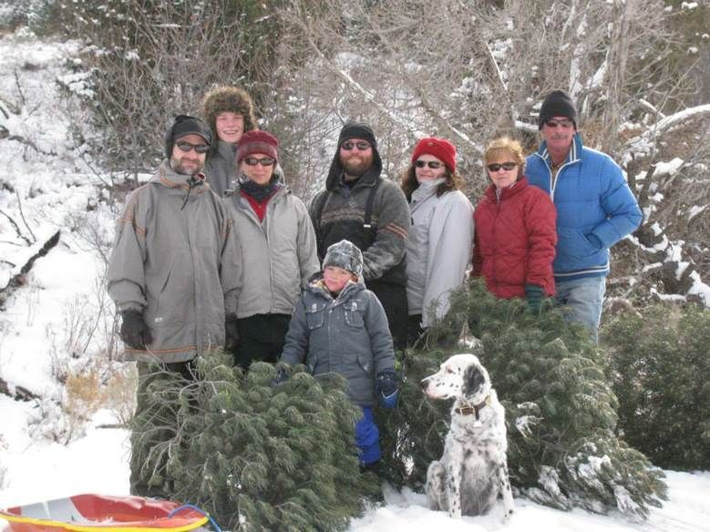 Sawtooth forest offers Christmas tree permits | Outdoors and ...