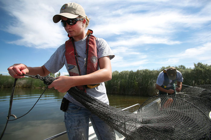 Carp eradication in hagerman ponds nears end for Big fish ponds for sale
